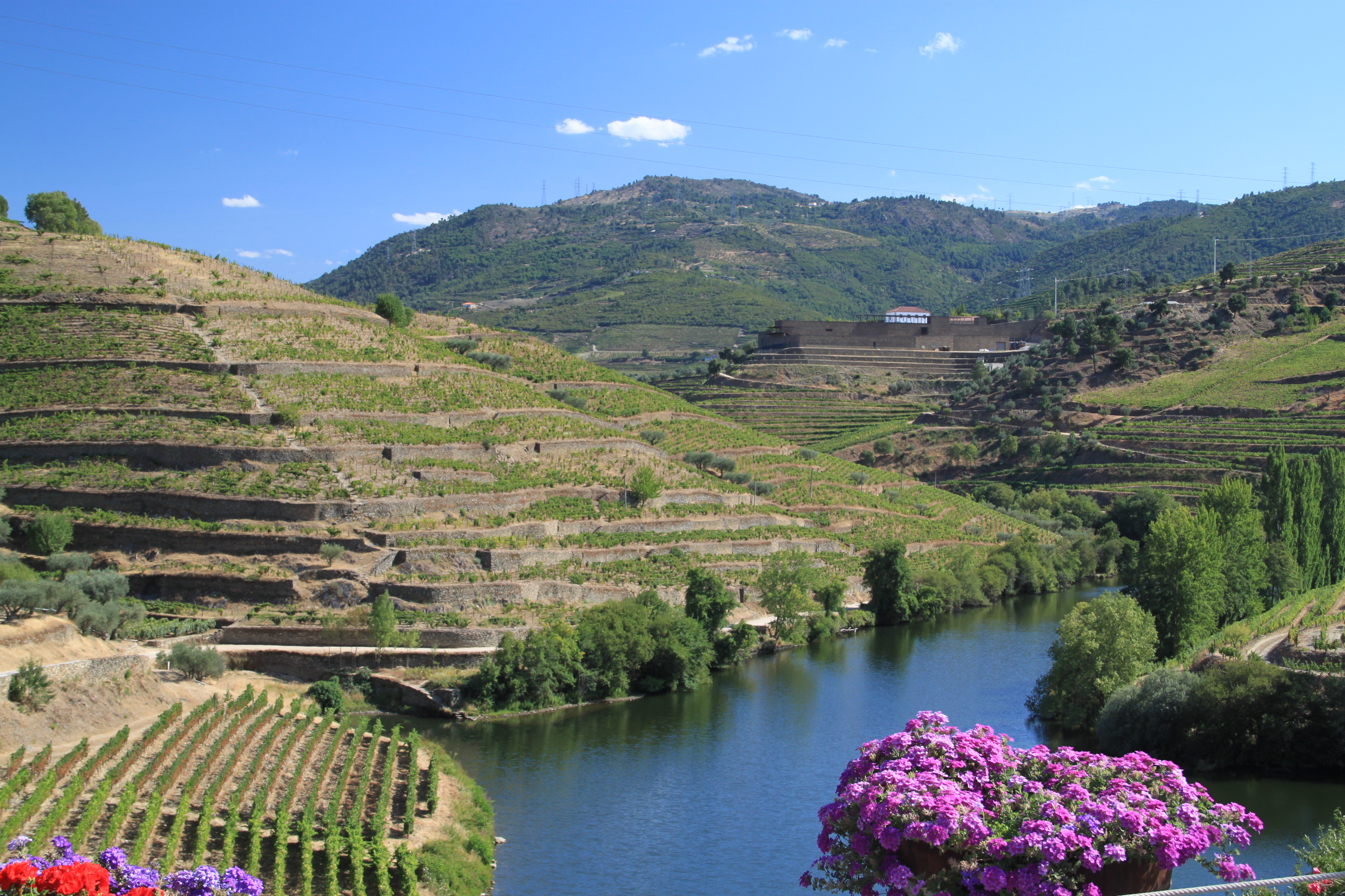 Flodkryssning i Dourodalen