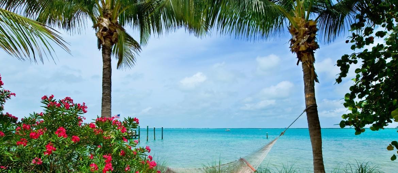 Hängmatta på stranden i Florida, USA