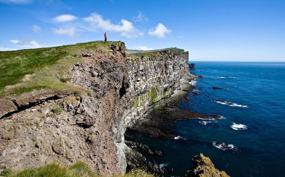 Latrabjarg, fågelklippa på västra Island
