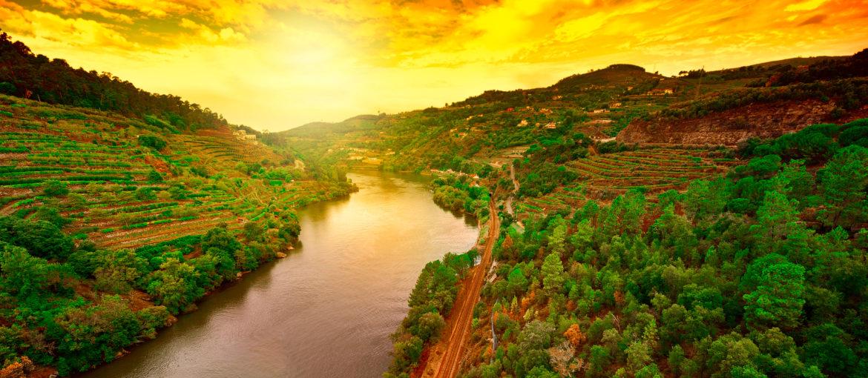 Flodkryssningar